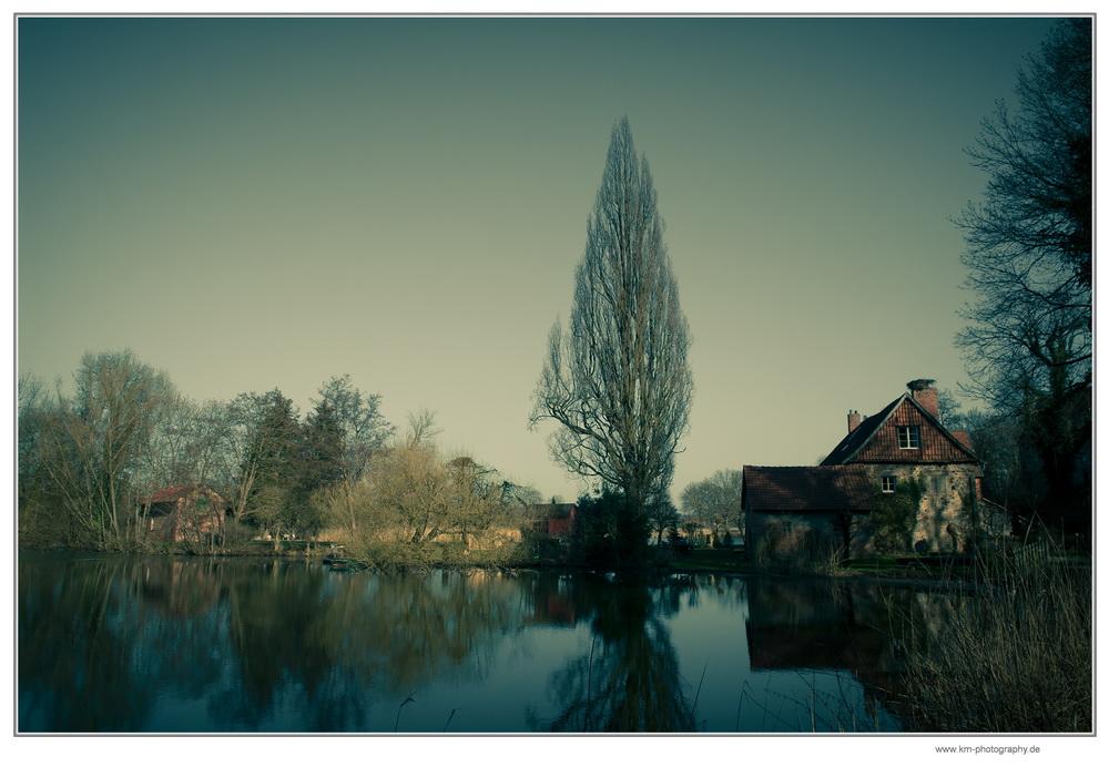Teich nähe Glashaus