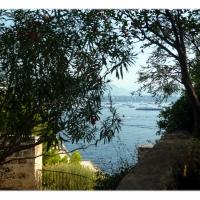 monte-carlo_03